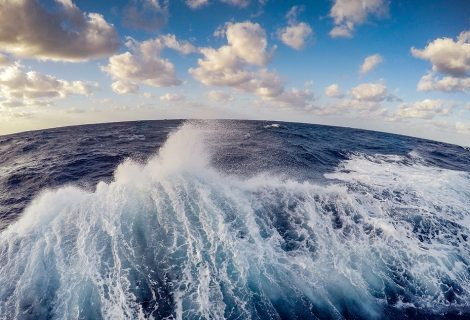 The ocean constitutes half of the oxygen supply of the world